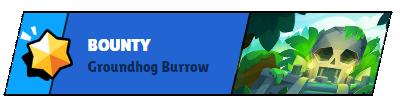 Bounty Ground Burrow